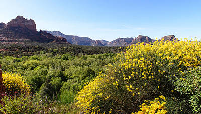 Photograph - Sedona Yellow Flowers by John Johnson