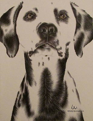 Dalmation Drawing - See Spot by Lisa Marie Szkolnik