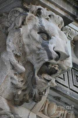 Photograph - See The Roar by Susan Herber