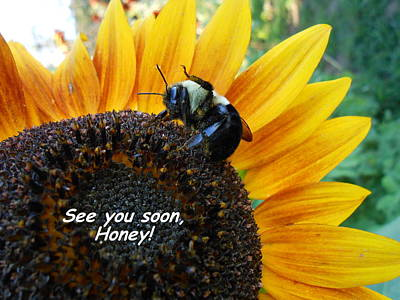 Photograph - See You Soon Honey by Diannah Lynch