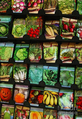 Photograph - Seed Packets by Judi Bagwell