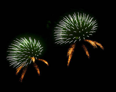 Fireworks Photograph - Seeds by Lester Phipps