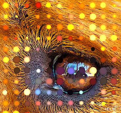 Rotty Photograph - Seeing Dots by Mayhem Mediums