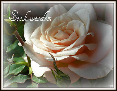 Art Print featuring the photograph Seek Wisdom Rose by Heidi Manly
