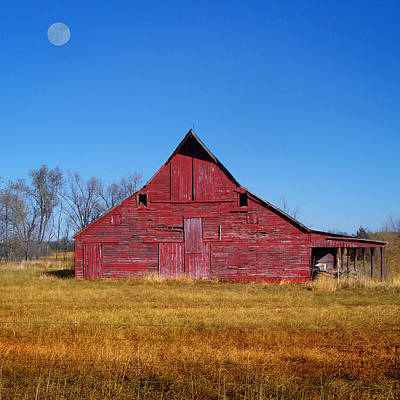 Photograph - Seen Many Moons by Rod Seel