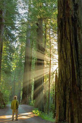 Self Portrait In God Rays Among Giant Art Print by Chuck Haney