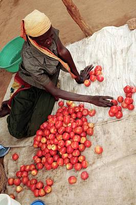 Black Commerce Photograph - Selling Tomatoes by Mauro Fermariello