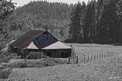 Photograph - Selma Barn Scene by Mick Anderson