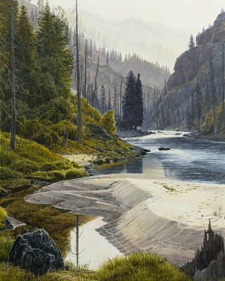 Selway River Art Print by Steve Spencer
