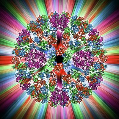 Semliki Forest Virus Capsid Art Print