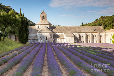 Lavender Photograph - Senanque Abbey And Lavender Field - Provence - France by Matteo Colombo