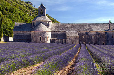 Senanque Abbey Print by Bob Phillips