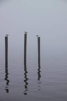 Seneca Lake Morning Mist Art Print