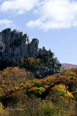 Photograph - Seneca Rocks by David Lester
