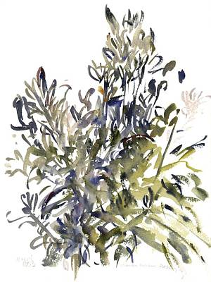 Flora Painting - Senecio And Other Plants by Claudia Hutchins-Puechavy