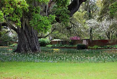 Sensational Springtime - Magical Garden I Art Print