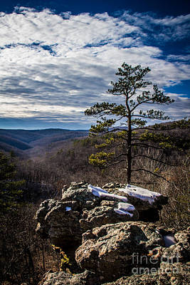 Photograph - Sentinel Over The Valley by Jim McCain