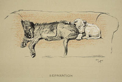Cute Puppy Drawing - Separation, 1930, 1st Edition by Cecil Charles Windsor Aldin