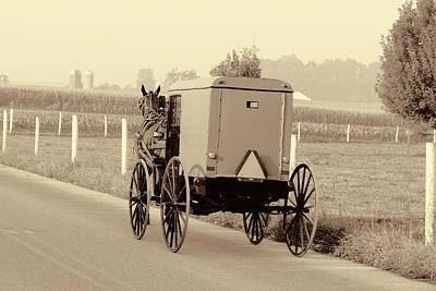 Photograph - Sepia Amish Buggy by Dan Sproul
