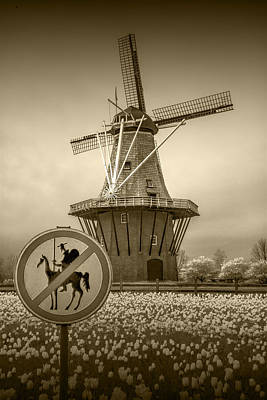 Marvelous Marble - Sepia Colored No Tilting at Windmills by Randall Nyhof