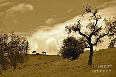 Sepia Of Two Horses Art Print