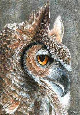 Painting - Sepia Owl by Carla Kurt