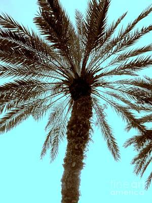 Art Print featuring the photograph Sepia Palm by Jeanne Forsythe