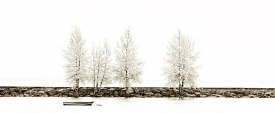 Photograph - Sepia Panorama Tree by U Schade