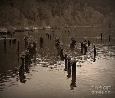 Photograph - Sepia Pilings by Chalet Roome-Rigdon