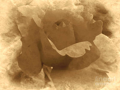 Photograph - Sepia Rose by Ava Larsen