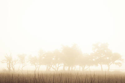 Photograph - Sepia Silhouette - Image Art By Jo Ann Tomaselli by Jo Ann Tomaselli