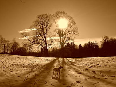 The Creative Minds Photograph - Sepia Sunrise by The Creative Minds Art and Photography