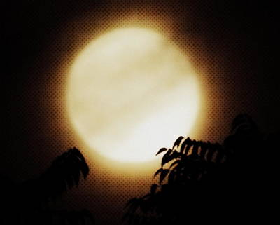 Moon Photograph - Sepia Super Moon by Kimberly-Ann Talbert