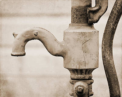 Sepia Water Pump Art Print by Lisa Russo
