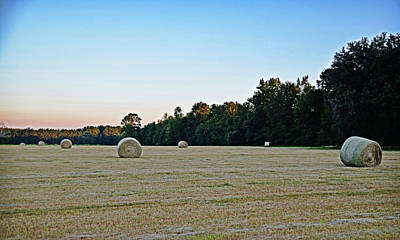 Photograph - September Field by Linda Brown