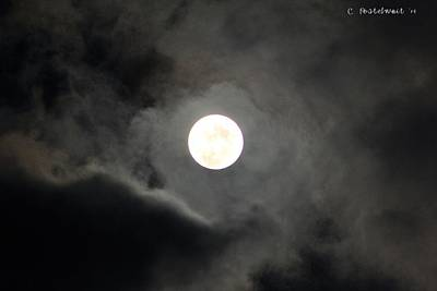 Photograph - September Full Moon by Carolyn Postelwait
