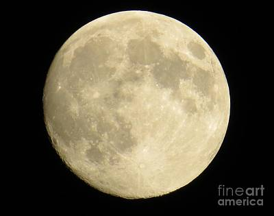 Photograph - September Moon by Judy Via-Wolff