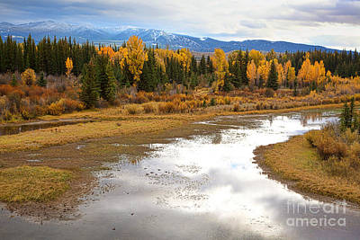 Photograph - September On The Gro Ventre River by Jim Garrison