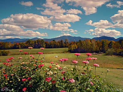 Photograph - September At Sugarhill New Hampshire by Nancy Griswold