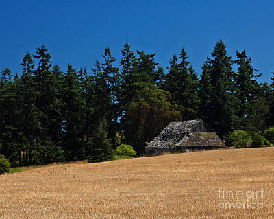 Photograph - Sequim Barn by Chuck Flewelling