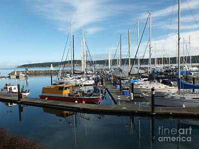 Photograph - Sequim Bay  by Heike Ward