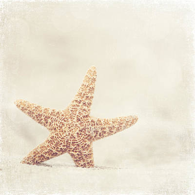 Beach Photograph - Serendipity by Carolyn Cochrane