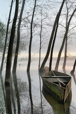 Serene Dawn Art Print