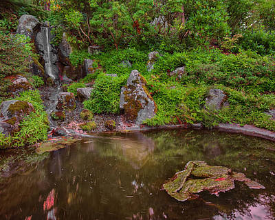 Photograph - Serene Garden Pond by Jonah  Anderson