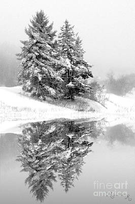 Photograph - Serene Reflections by Mariarosa Rockefeller