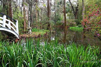 Photograph - Serene Southern Pond by Carol Groenen