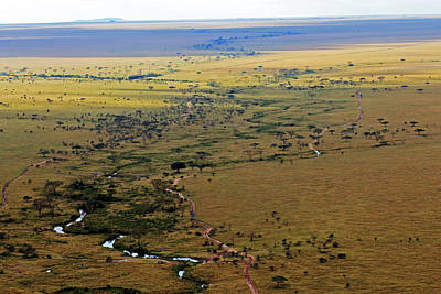 Serengeti Landscape Art Print
