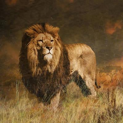 Art Print featuring the photograph Serengeti Sunset by Brian Tarr