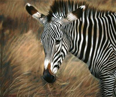 Painting - Serengeti Zebra by Carol McCarty