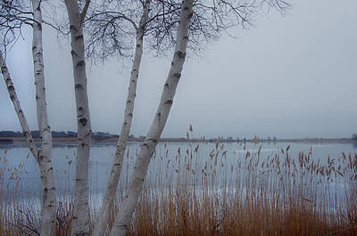Winter Scenes Photograph - Serenity By The Sea by Joann Vitali